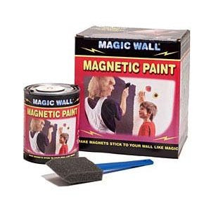 Magic Wall Magnetic Paint Kit: One Pint & Applicator