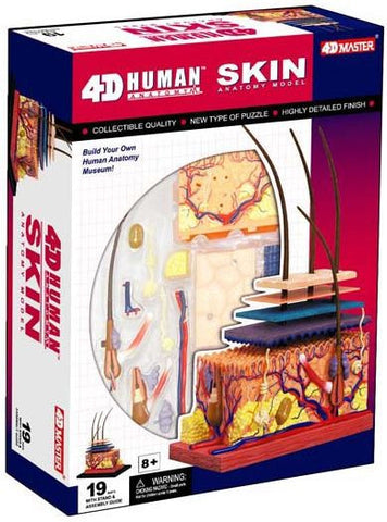 4D Human Anatomy Visable Skin-Model 3D CutAway Puzzle