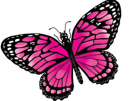 Insect Pink Morpho Butterfly Wing Flapper Kite-43 x 26