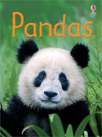 Pandas - Usborne Book - Beginners Reader Ages 6+