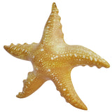 "Inflatable Aquatic Animals 2-Pack - 20"" Seahorse and 20"" Starfish"