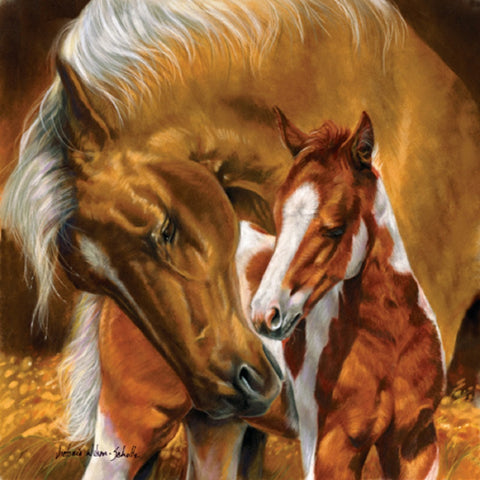 A Mothers Touch - Mare & Foal Jigsaw Puzzle - 500 pc