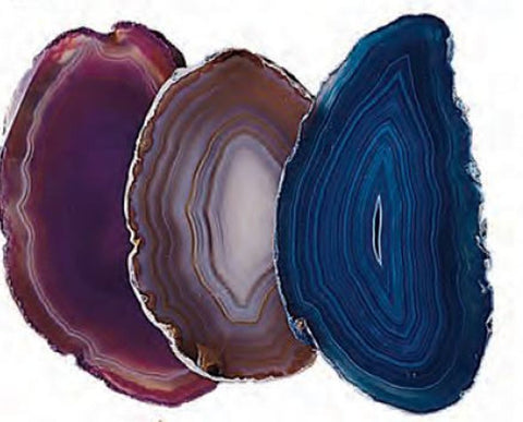 One Agate Slice Approx. 2.25 Inches with Info Card - Colors Vary