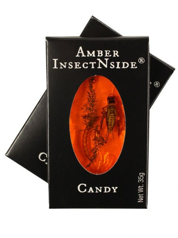Hotlix Amber Brittle InsectNSide Toffee-flavored Candy - Pack of 2 Candy with Real Bug