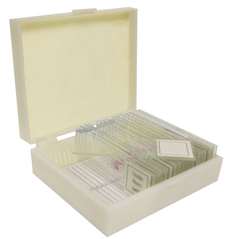 Human Body Physiology Microscope Prepared 16 Slide Set  Apologia
