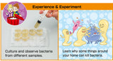 Bacteria Farm Experiment Kit and Study Guide By Artec