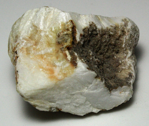 Barite Bologna Stone - Pack of 2 Rocks - Unpolished Mineral Specimens