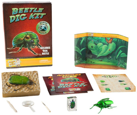 Puzzle Master Beetle Dig Kit w 3D Model by Discover w Dr Cool
