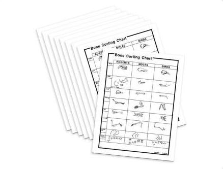 15 Bone Sorting Charts For Owl Pellets Online Science Mall