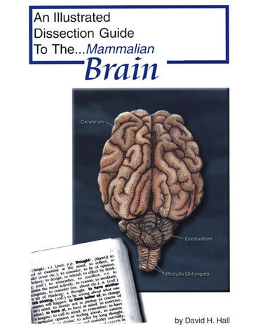 Illustrated Dissection Guide Book to the Mammal Brain