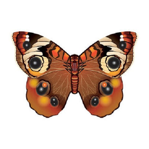 WindnSun Buckeye Butterfly MicroKite - 4.7 Inches