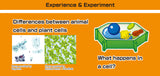 Cells of Life Biology Experiment Kit By Artec Educational
