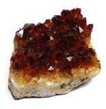 Dark Citrine Quartz Crystal Cluster Druse Rough Half-Dollar Size w Info Card