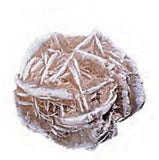 Jumbo Gypsum Desert Rose Mineral Crystal Rock 2-2.5 Inch w Info Card