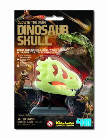 Glow In The Dark Dinosaur Skull & Stand