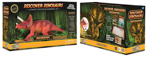 "8"" Long Triceratops Dinosaur Action Figure w/Activity Book, by Dr. Cool"