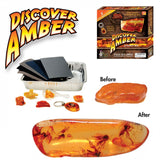 Discover Amber Activity Kit - With 5 Real Raw Amber Pieces
