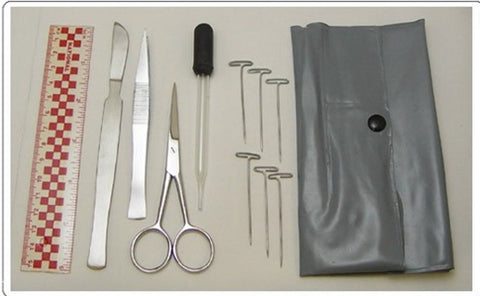 Class Pack of 10 Basic Elementary Dissecting Sets for Beginning Dissection