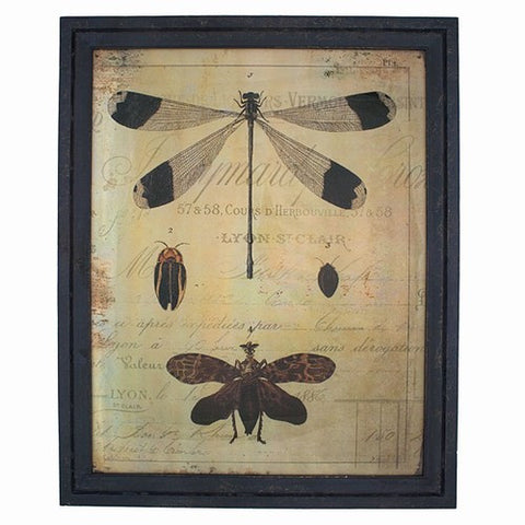 Gilded Mirror Dragonfly Print in Wooden Frame 21 x 17 Inches