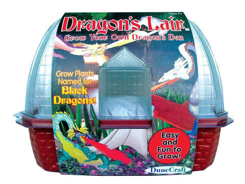 Grow Your Own Dinosaur Plant Trio