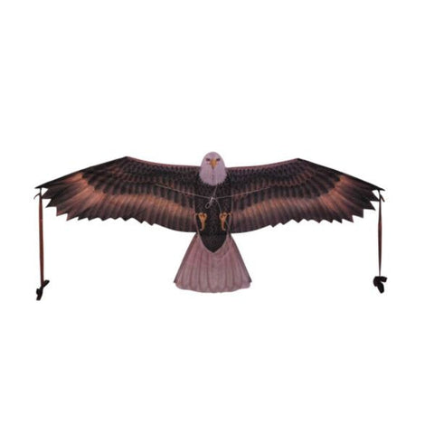 X Kites Birds of Prey Nylon Eagle Kite-48 Inch Wingspan