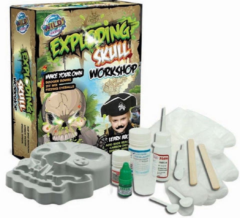 Wild Science Create Your Own Exploding Skull Workshop Kit