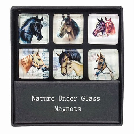 Glass Magnets with Horse Head Prints - Set of 6