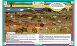 Fossils - Paleontology Activity Placemat by Tot Talk
