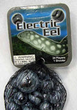 Electric Eel Game Net Set 25 Piece Glass Mega Marbles
