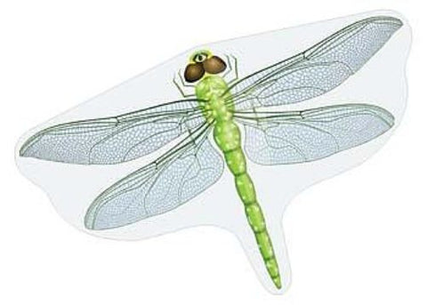 Realistic Dragonfly Flapper Kite - 43 Inch Wingspan