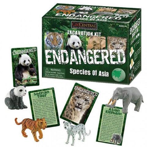 Endangered Species of Asia Excavation Kit Set of 4 Animals