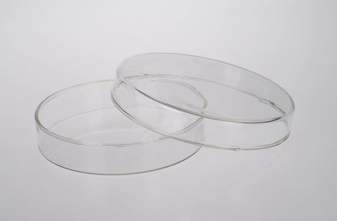 Borosilicate Glass Petri Dish: 100 mm Diameter: Each with Cover