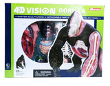 4D Vision Gorilla Anatomy Model By 4D Master