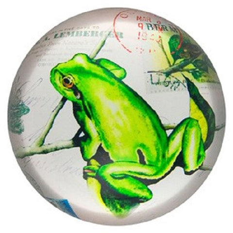 Glass Paperweight; Green Tree Frog Print