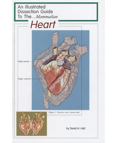 Illustrated Dissection Guide Book to the Mammal Heart
