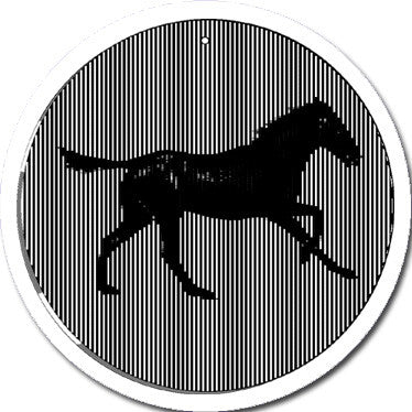 Galloping Horse - Large 11 Inch CineSpinner - Animated Suncatcher