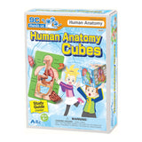 Human Anatomy Cube, Puzzle, and Study Guide By Artec