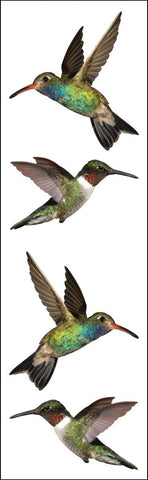 Mrs Grossman's Stickers - Hummingbird Photos