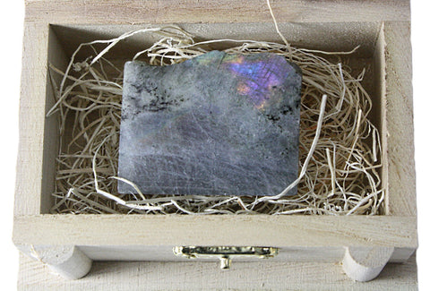 Labradorite Treasure Chest Collector Rock 1-1.25 Inch w Info Card