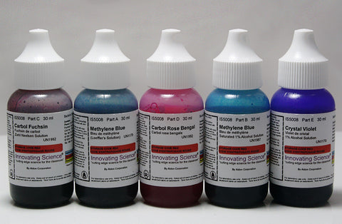General Bacteria Staining Kit, w/5 Common Chemical Reagent Stains
