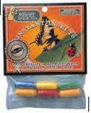 "Magic Capsules Toy ""Instant Insects"" Foam Figures"