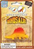 Grow Your Own Dinosaur: Collectible Magic Growing Thing