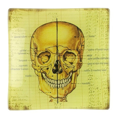 3.75 Inch Glass Trinket Tray w/Human Skull Design - Set of 2