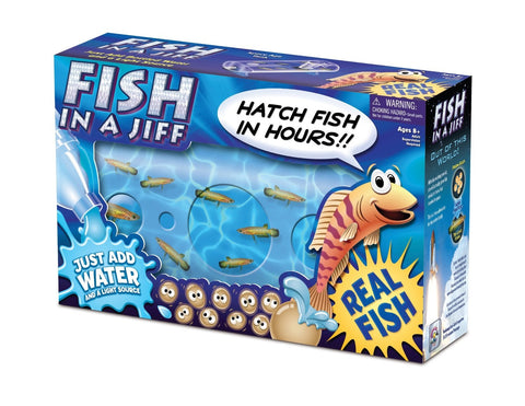 Fish In A Jiff Kit; Amazing Living Ancient Creatures