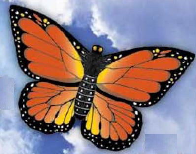 WindnSun Monarch Butterfly Nylon Kite - 32 Inches Wide