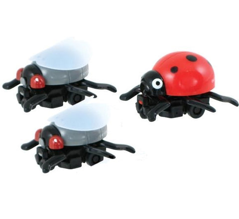 3 Insane Insects Pullback Toys - Ladybug and 2 Flies