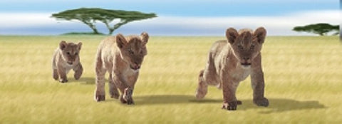 Animated Lion Cubs Bookmark