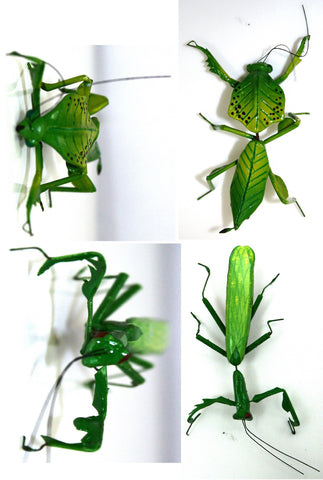 Praying Mantis Fridge Magnet - Style Varies