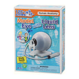 Model Eye with Liquid Lens and Study Guide By Artec