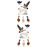 Mrs Grossman's Stickers - Water Fowl Animal Photos
